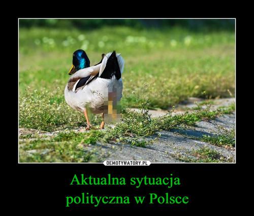 Aktualna sytuacja  polityczna w Polsce