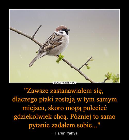 """""""Zawsze zastanawiałem się,  dlaczego ptaki zostają w tym samym miejscu, skoro mogą polecieć gdziekolwiek chcą. Później to samo pytanie zadałem sobie..."""""""