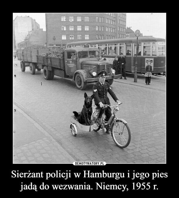 Sierżant policji w Hamburgu i jego pies jadą do wezwania. Niemcy, 1955 r. –