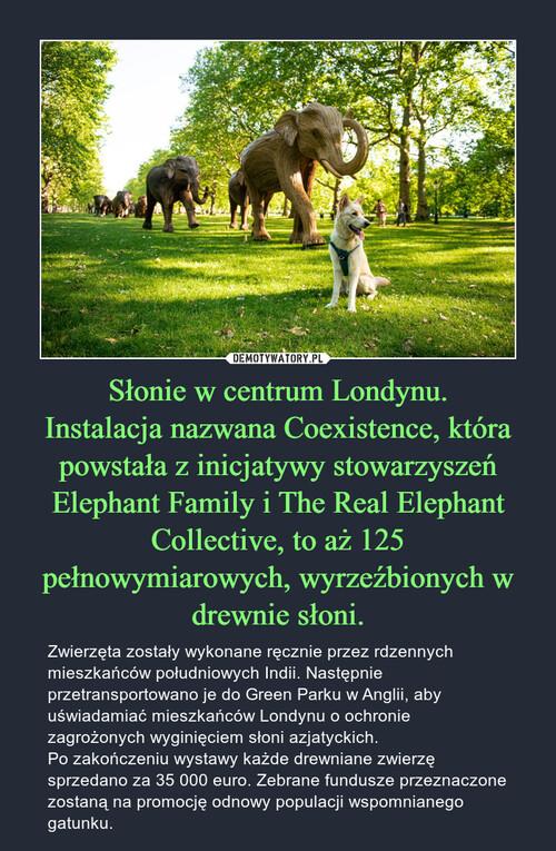 Słonie w centrum Londynu. Instalacja nazwana Coexistence, która powstała z inicjatywy stowarzyszeń Elephant Family i The Real Elephant Collective, to aż 125 pełnowymiarowych, wyrzeźbionych w drewnie słoni.