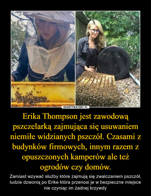 Erika Thompson jest zawodową pszczelarką zajmująca się usuwaniem niemiłe widzianych pszczół. Czasami z budynków firmowych, innym razem z opuszczonych kamperów ale też ogrodów czy domów.