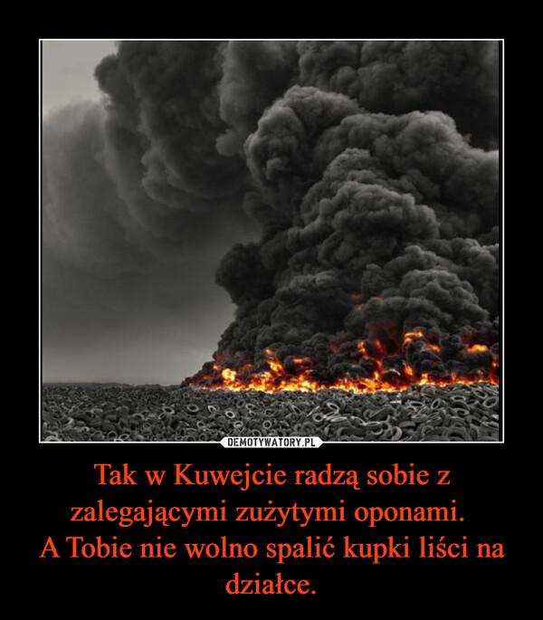 Tak w Kuwejcie radzą sobie z zalegającymi zużytymi oponami. A Tobie nie wolno spalić kupki liści na działce. –